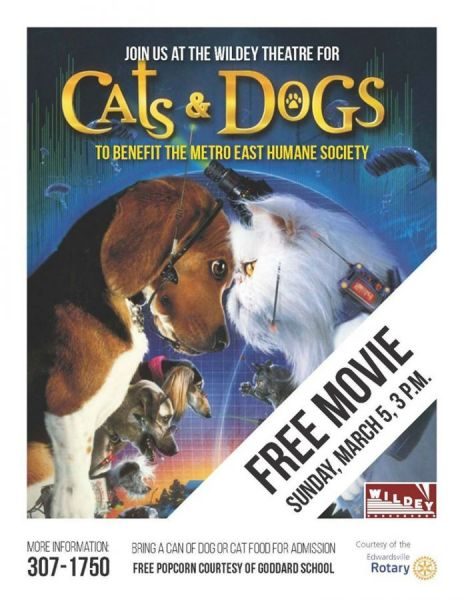 Cats & Dogs (family fun event)